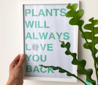 Kader met quote 'Plants will always love you back'.