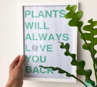 Kader met quote 'Plants will always love you back'.
