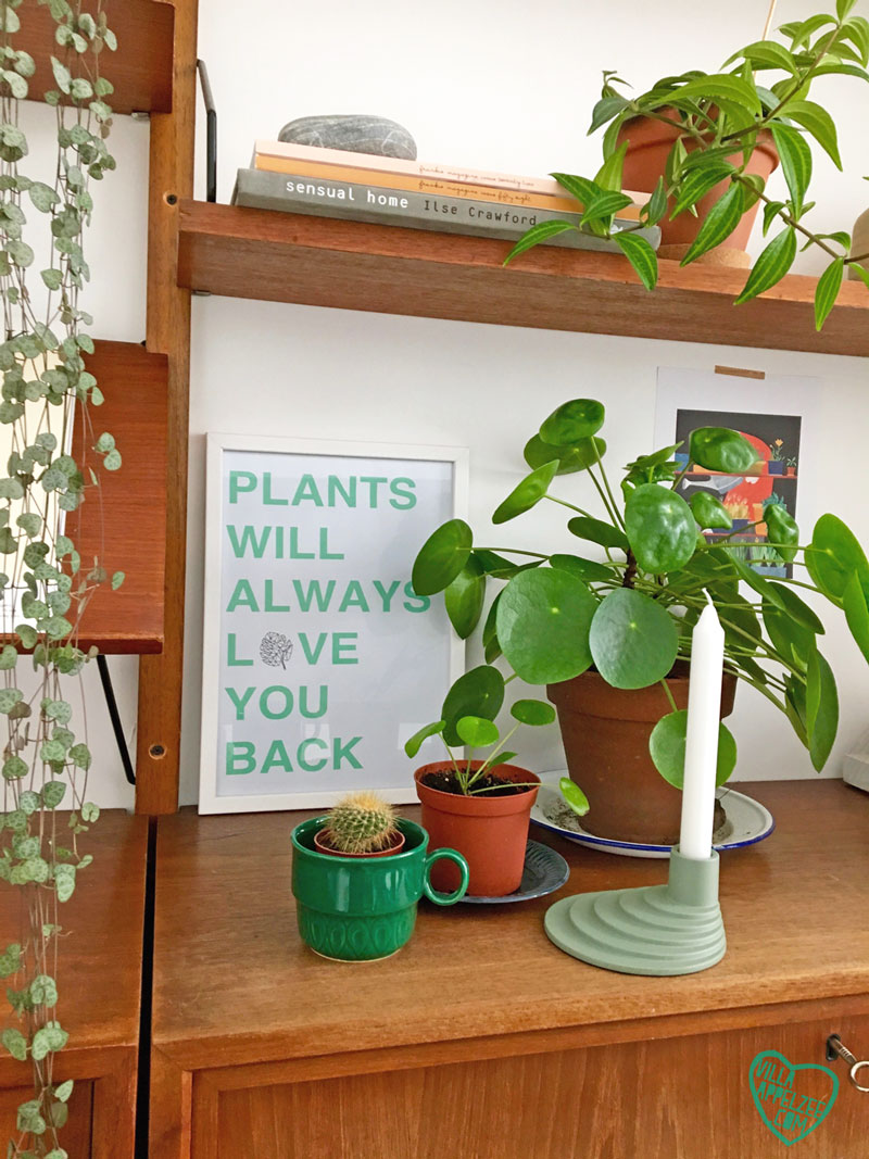 Shelfie met planten en quote