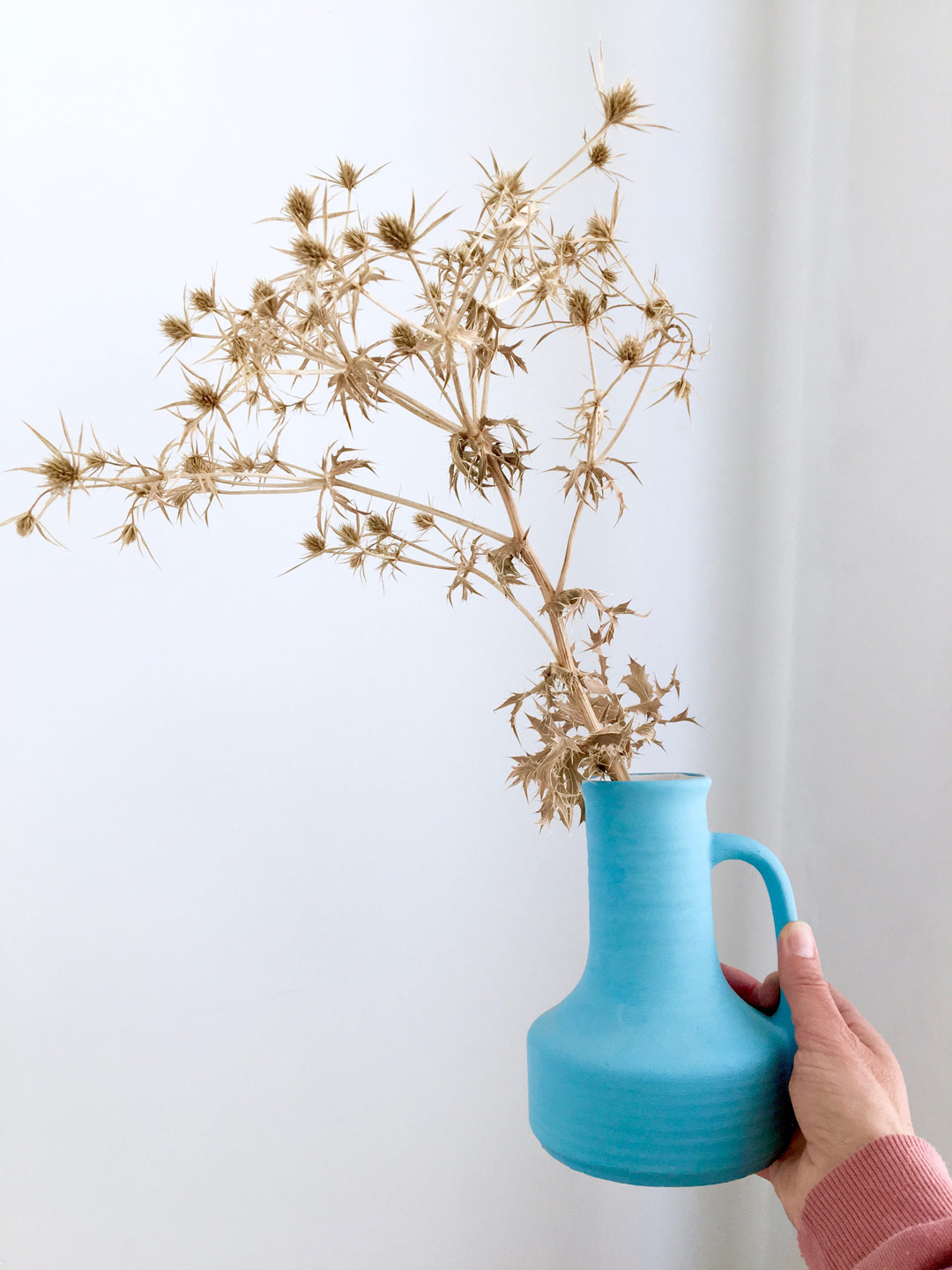Thistel in blue vase held up by hand