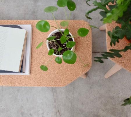Kleine tafel met kurk